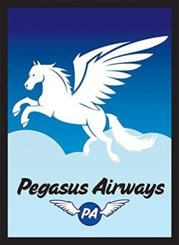 Legion - Standard Sleeves - Pegasus Air (50 Sleeves)